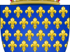 Royal Shield of France