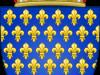 Royal Shield of France